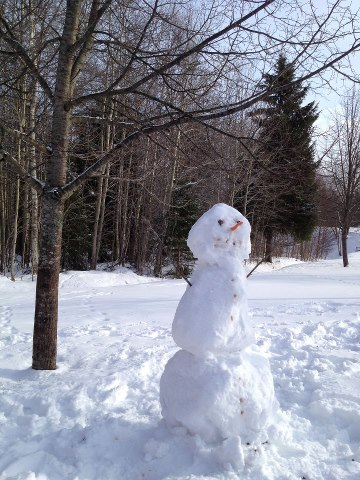 snowman, snögubbe
