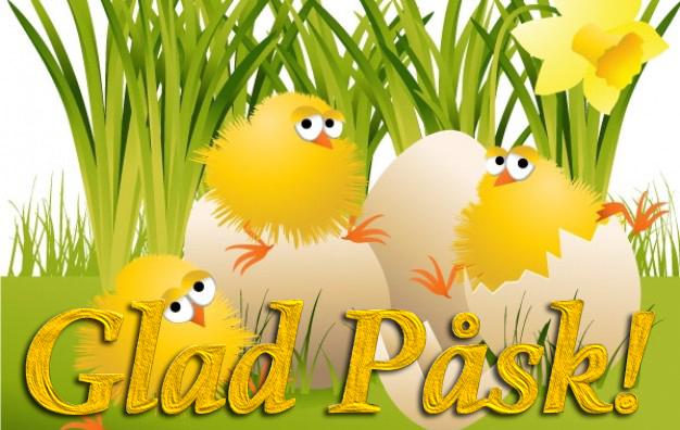 chickens, easter, påsk, kycklingar, glad påsk